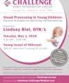 Visual Processing in Young Children